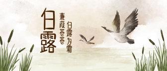 白露/文艺/中国风/公众号首图