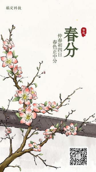春分/插画/手机海报