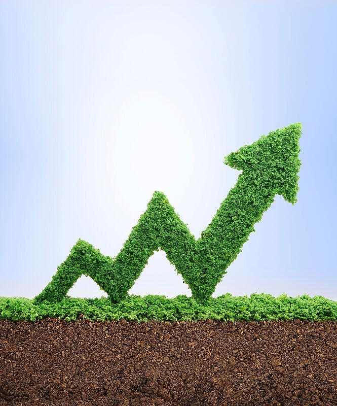 概念,垂直画幅,气候,无人,泥土,箭头符号,草,股市数据,市场营销,球门