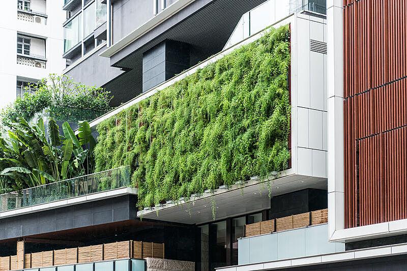 建筑外部,墙,现代,蕨类,生活方式,园艺,直立式花园,大笪地,环境保护,可持续资源