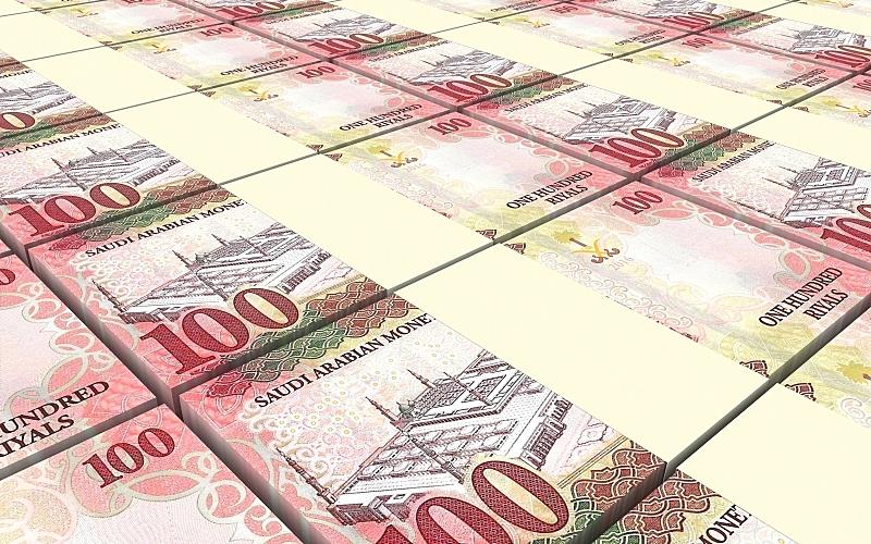 沙特阿拉伯,帐单,水平画幅,形状,100号,无人,麦加,符号,金融,组物体