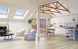 阁楼,室内地面,顶楼公寓,复式楼,壁炉,地毯,水平画幅,墙,无人,天花板