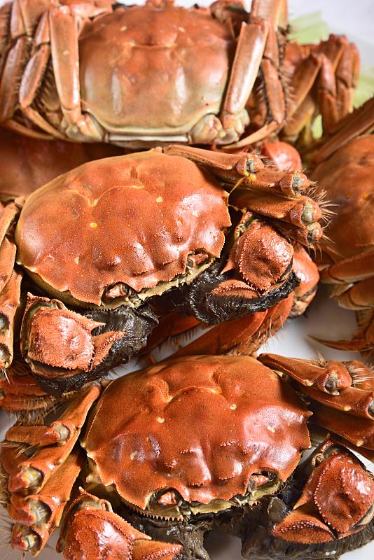 多毛的,蒸菜,螃蟹,大闸蟹,水生动植物,上海,餐具,垂直画幅,开胃品,传统