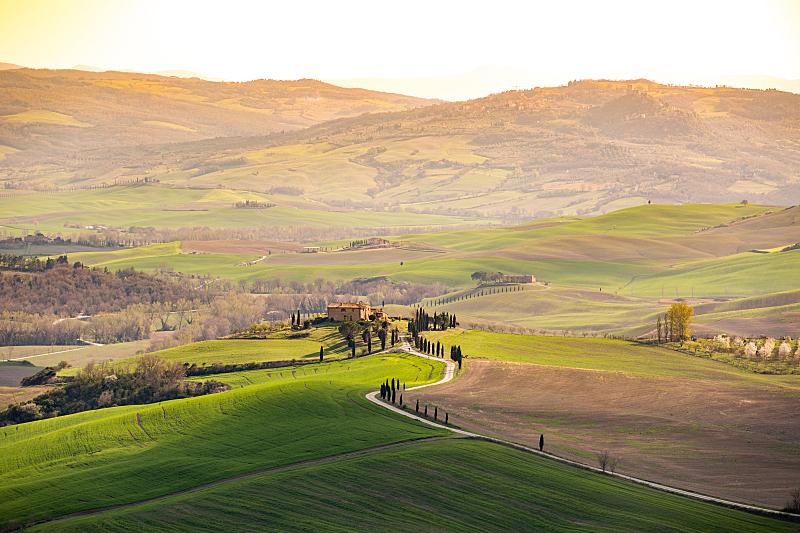 丘陵起伏地形,托斯卡纳区,地形,春天,维得斯卡,柏树,水平画幅,山,无人,户外