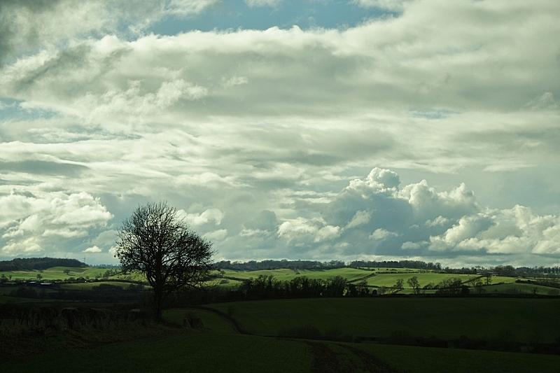 诺坦普顿郡,天空,草原,水平画幅,山,无人,户外,戏剧性的天空,草,云景