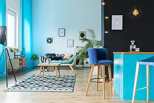 厨房,活动房屋,起居室,留白,水平画幅,电灯泡,艺术品,家庭生活,含酒精饮料,灯