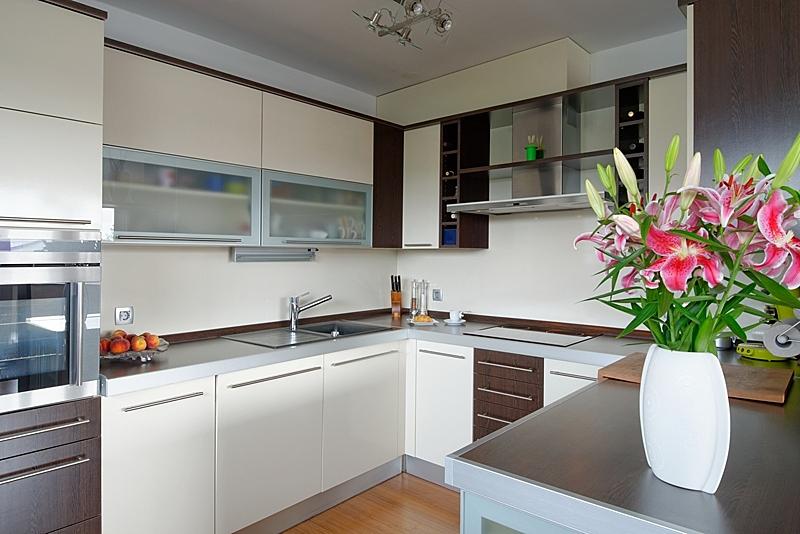 现代,房屋,室内,高雅,厨房,拉丝金属,水平画幅,无人,抽油烟机,胡桃木