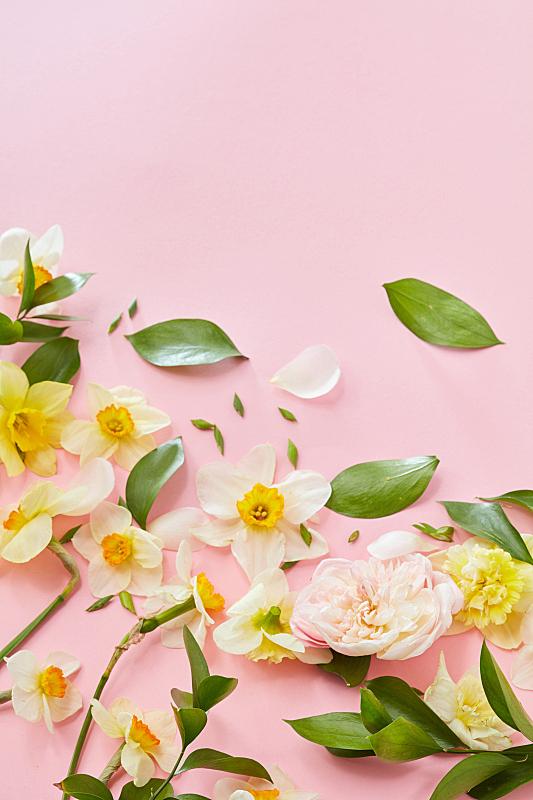 垂直画幅,贺卡,留白,夏天,生日,明亮,花束,白色,清新,花头