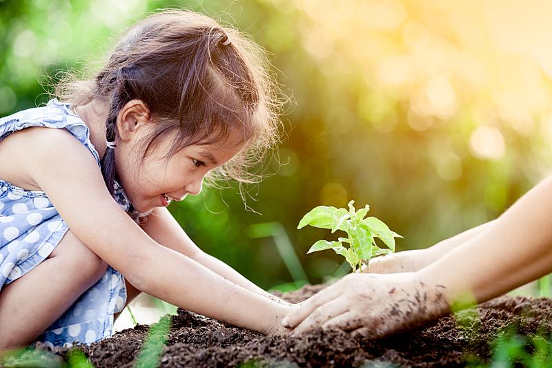 儿童,父母,泥土,女孩,黑色背景,亚洲,园艺,种子,自然,树苗