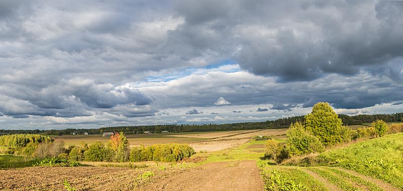 地形,风景,拉脱维亚,水平画幅,枝繁叶茂,九月,户外,草,明亮,树林