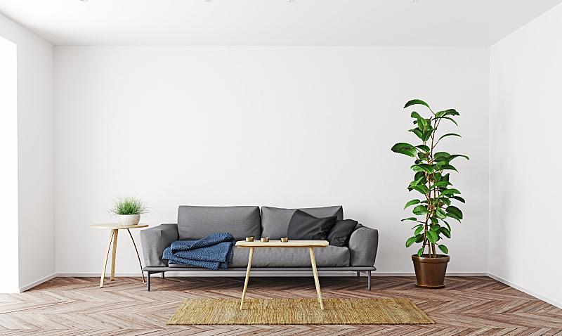 现代,起居室,室内设计师,斯堪的纳维亚半岛,暗色,舒服,边框,地板,沙发,装饰物