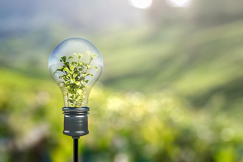 电灯泡,能源,重新造林,纯净,灯,光,全球通讯,地球形,全球商务,想法