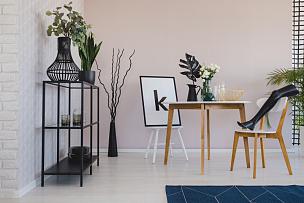 空的,腿,椅子,木制,高雅,人造模特,花瓶,室内,叶子