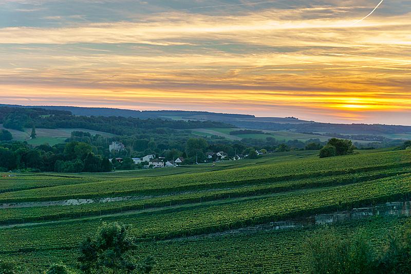 香槟,葡萄园,法国,兰斯山,兰斯,葡萄酒,天空,葡萄酒厂,水平画幅,山