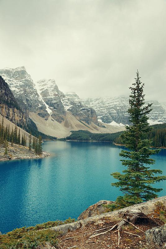 梦莲湖,班夫,自然,垂直画幅,图像,国家公园,阿尔伯塔省,加拿大,无人,湖
