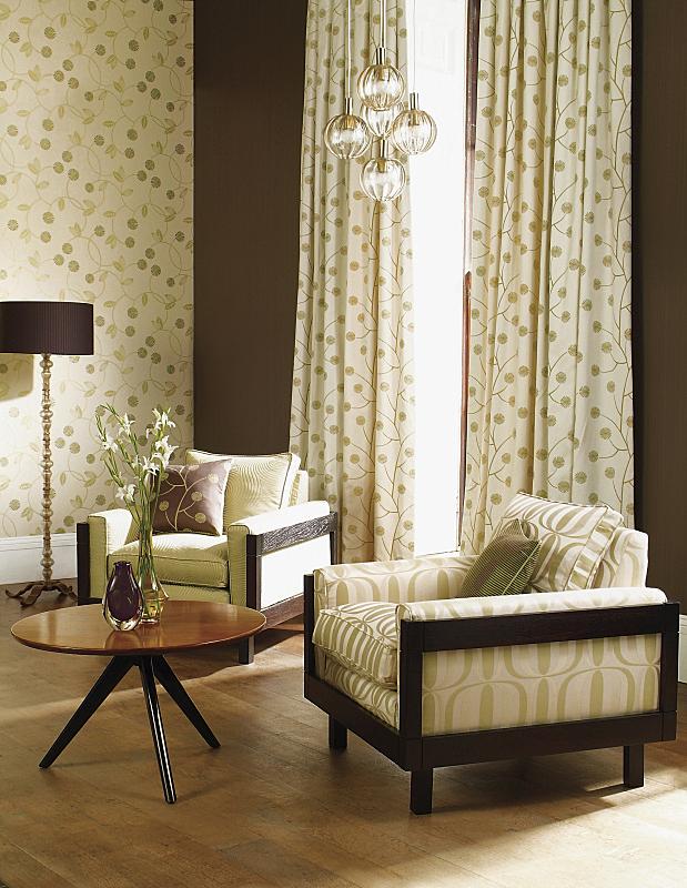 椅子,传统,室内,起居室,落地灯,垂直画幅,褐色,无人,硬木地板
