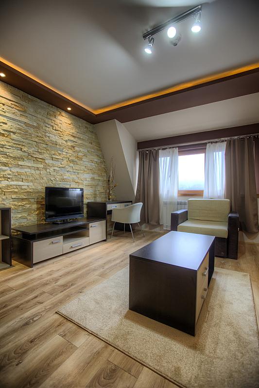 现代,室内,垂直画幅,无人,地毯,灯,家具,沙发,地板,时尚
