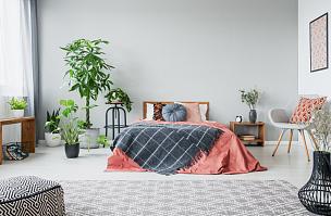 现代,地毯,舒服,墙,式样,空的,灰色,卧室,城市生活,摄影