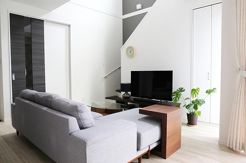 房屋,生活方式,新的,水平画幅,硬木地板,架子,室内植物,居住区,餐桌,沙发