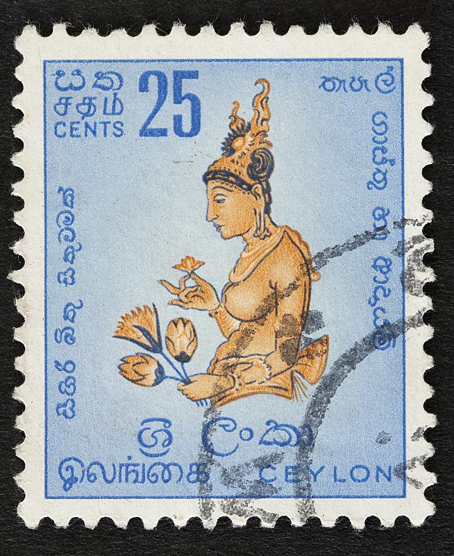 斯里兰卡,垂直画幅,女人,古典式,成年的,摄影