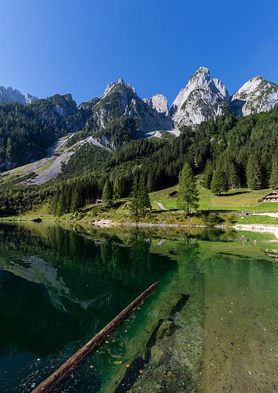 湖,奥地利,阿尔卑斯山脉,欧洲,地形,山脉,戈绍,垂直画幅,度假胜地,无人