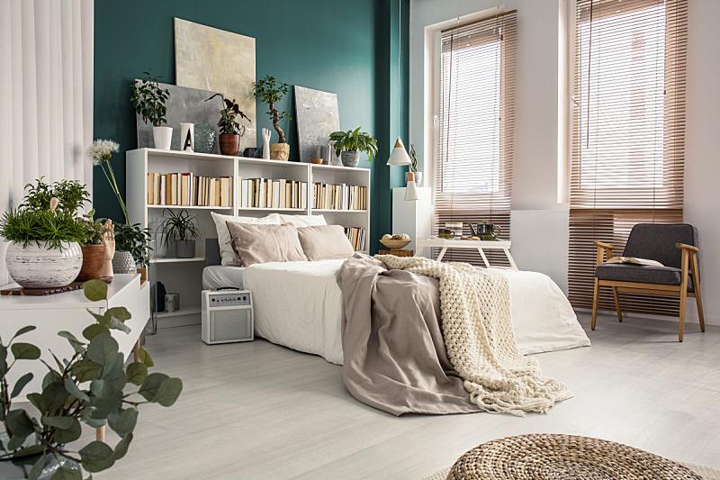 侧面视角,双人床,水平画幅,家庭生活,家具,明亮,居住区,白色,植物,毯子