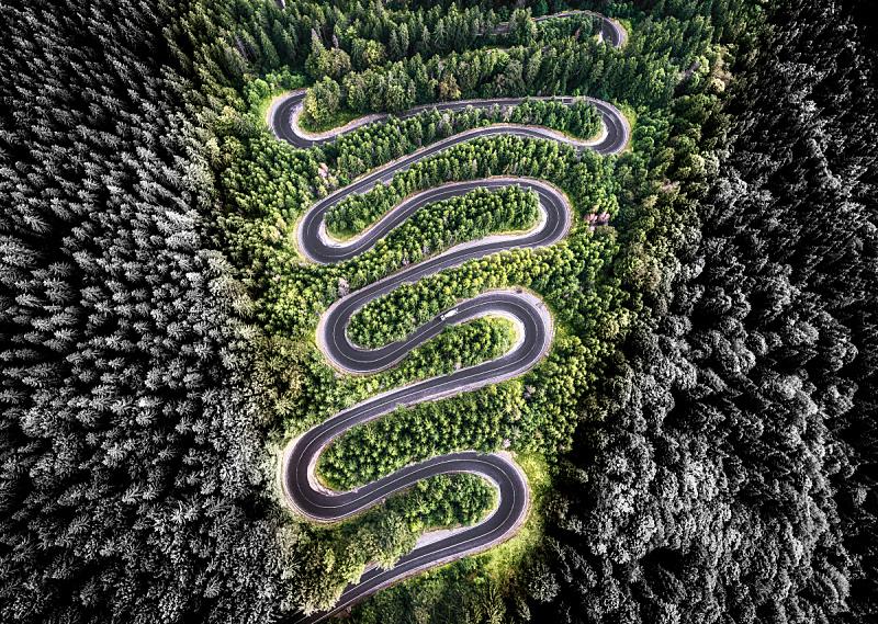 蜿蜒,航拍视角,森林,创造力,山口,林荫路,风,水平画幅,山,鸟类