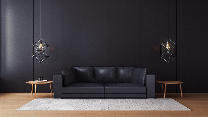 墙,黑色,起居室,极简构图,水平画幅,形状,无人,椅子,古典式,夏天