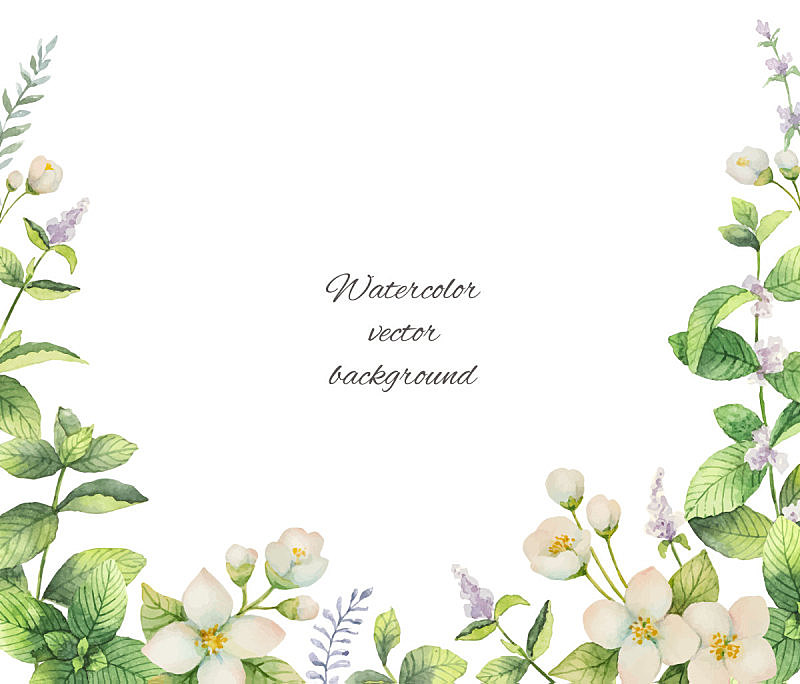 Watercolor vector frame of flowers and branches Jasmine isolated on a white background.