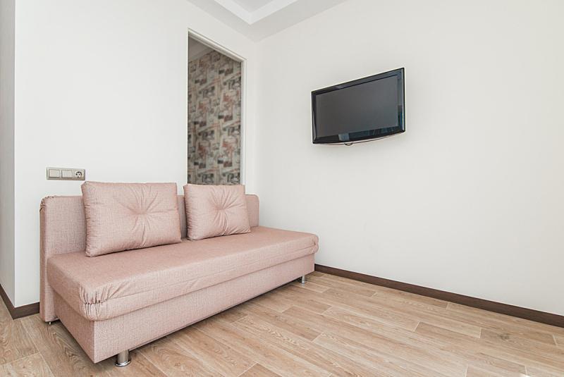 沙发,明亮,电视机,住宅房间,公寓,空的,房屋,舒服,室内,图像