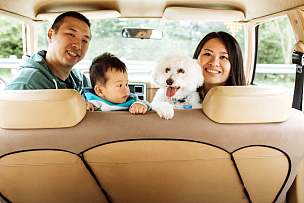 狗,婴儿,年轻双亲,三个孩子的家庭,汽车保险,老爷车,小狗,汽车内部,自驾游,双亲家庭