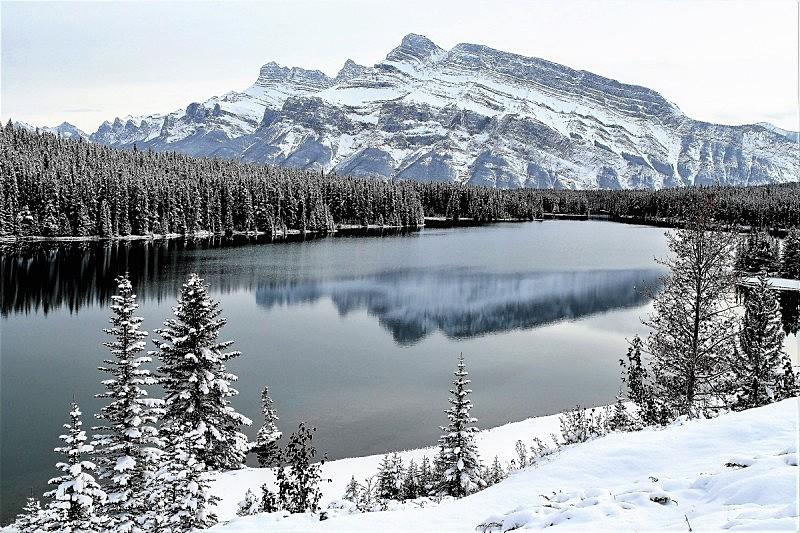 山,冬季仙境,班夫,风景,冬天,图像,雪,阿尔伯塔省,加拿大,松科