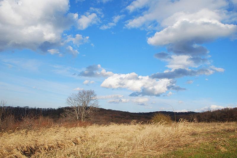 自然,地形,水平画幅,绿色,无人,蓝色,草,黄色,云,白昼