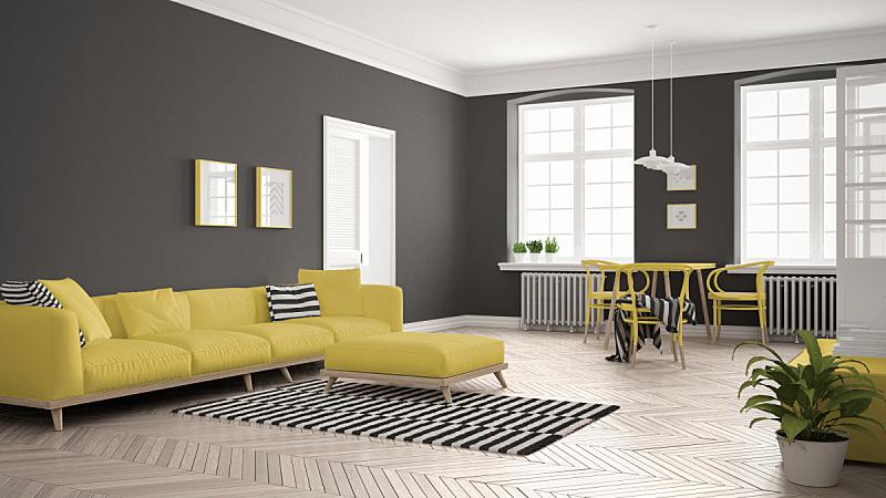 黄色,白色,明亮,沙发,起居室,极简构图,斯堪的纳维亚人,室内设计师,餐桌,顶楼公寓