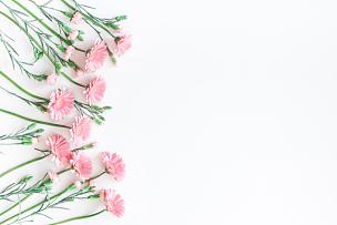 粉色,在上面,白色背景,平铺,视角,贺卡,留白,夏天,生日,模板