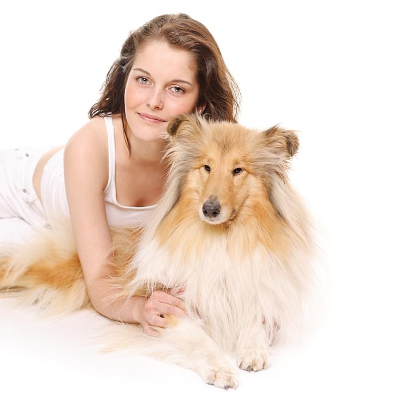 狗,青年女人,可爱的,纯种犬,背景分离,北欧血统,一个人,肖像,女人,自然美