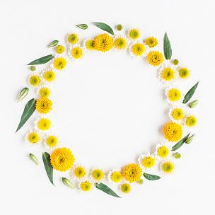黄色,花环,白色背景,多样,雏菊,国际妇女节,甘菊,母亲节,花纹,春天