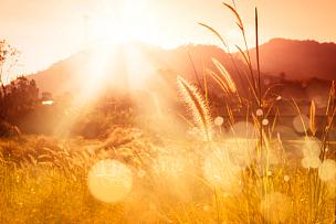 草,山,决心,背景虚化,天空,灵性,灵感,水平画幅,无人,早晨
