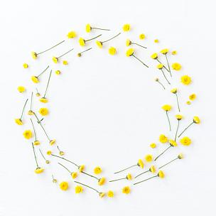 黄色,花环,平铺,视角,蒲公英,野花,花纹,鲜花盛开,爱沙尼亚,留白