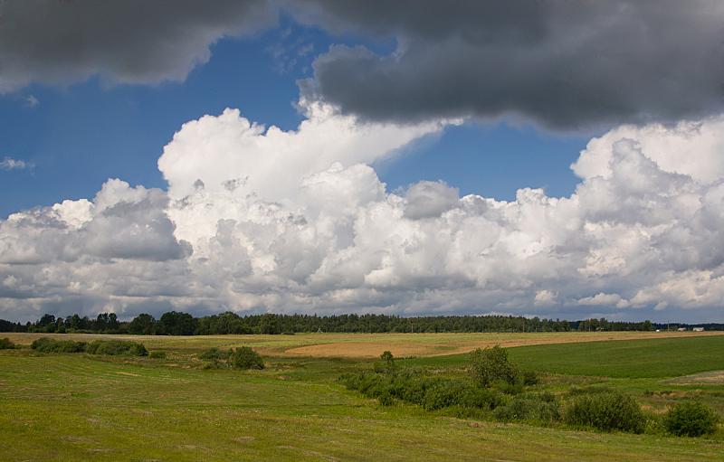 天空,夏天,陆地,地平线,自然,草地,宁静,非都市风光,水平画幅,绿色