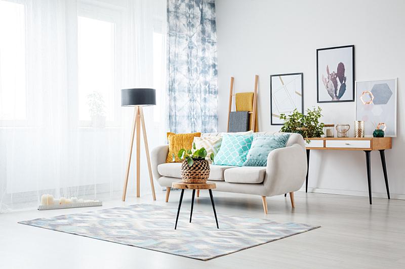 起居室,水平画幅,无人,家具,明亮,现代,沙发,植物,毯子