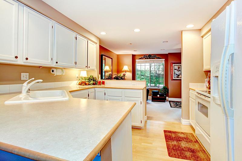 住宅房间,厨房,明亮,水平画幅,无人,豪宅,房地产,天花板,冰箱,家具