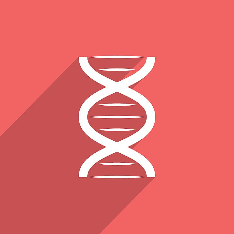 脱氧核糖核酸,蜘蛛网,计算机图标,乱画,式样,无人,绘画插图,剪贴画,符号,抽象