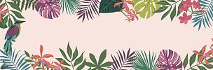 矢量,背景,鸡尾酒,棕榈叶,边框,水平画幅,纺织品,无人,绘画插图,鸟类