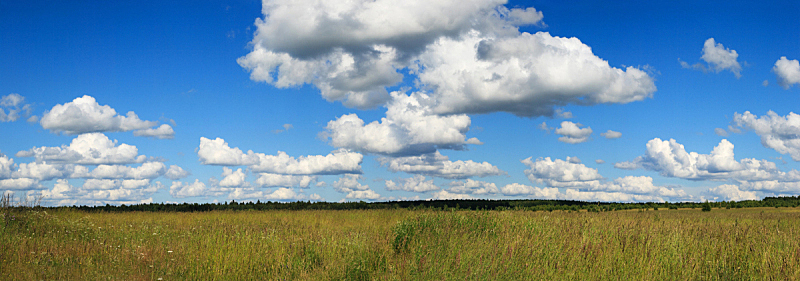 田地,绿色,全景,天空,水平画幅,无人,草坪,夏天,户外,草