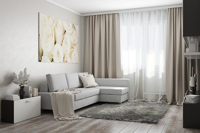 光,起居室,窗户,新的,水平画幅,绘画艺术品,建筑,柜子,乌克兰,房屋