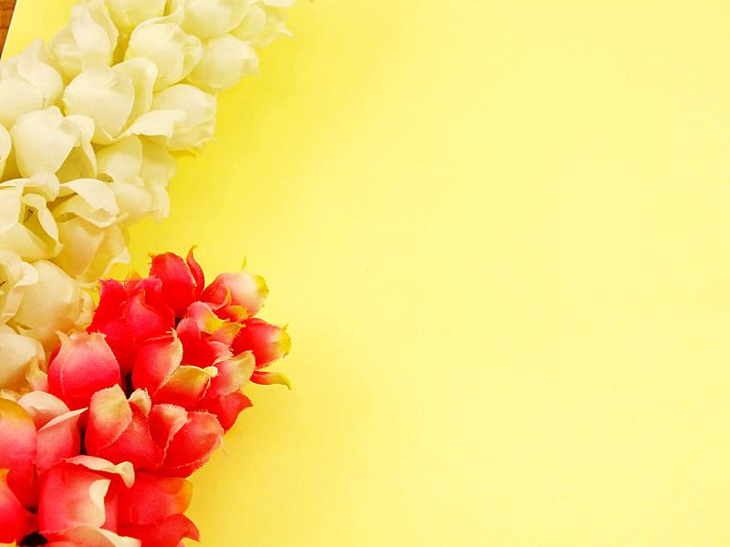 人造的,多色的,仅一朵花,纹理,空白的,纸,式样,水平画幅,无人,装饰物