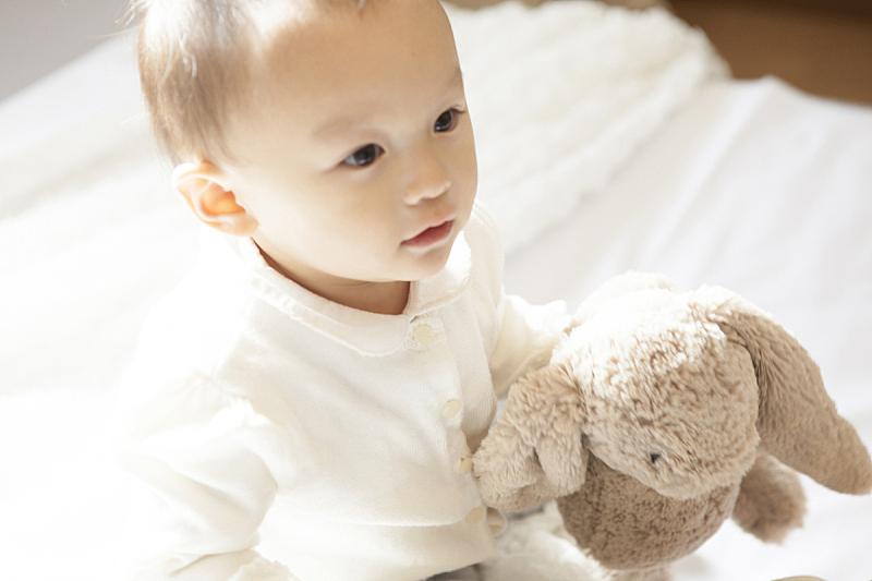日本人,男孩,儿童,玩具,拿着,注视镜头,毛绒玩具,留白,水平画幅,仅日本人