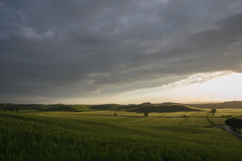 暴风雨,托斯卡纳区,自然,草地,非都市风光,水平画幅,无人,户外,田地,环境