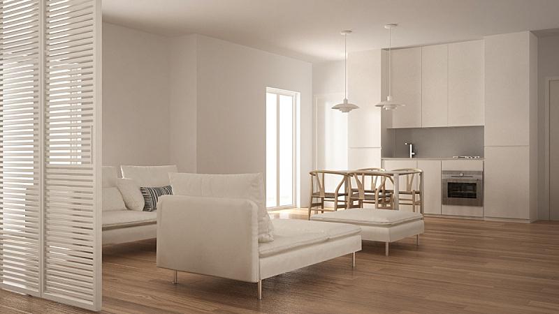 沙发,白色,起居室,极简构图,厨房,躺椅,餐桌,室内设计师,水平画幅,无人